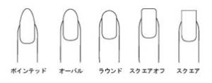 爪の形キャプチャ